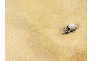 Terrains Desert Sand 250ml - AK8020