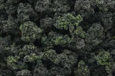 Směs lesních keřů (Bushes Forest Blend Bag) - FC149