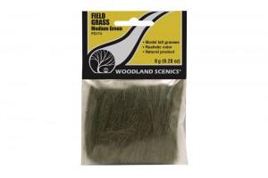 Zelená polní tráva (Field Grass Medium Green) - FG174