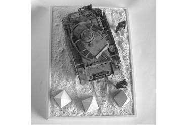 Dračí zuby - 3N48