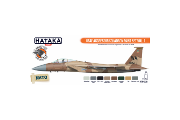 USAF Aggressor Squadron - CS29