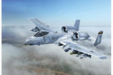 """A-10C """"Blacksnakes"""" (1:48) - 2725"""