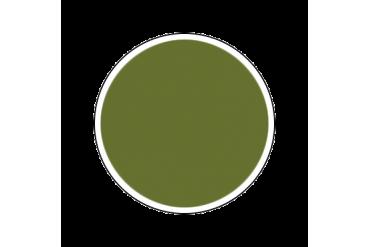 4309AP - Flat Light Green 20ml - akryl