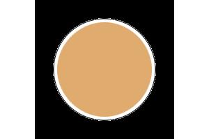 4603AP - Flat Skin Tone Warm Tint 20ml - akryl