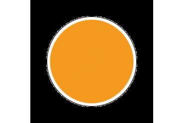 4642AP - Gloss Yellow 20ml - akryl