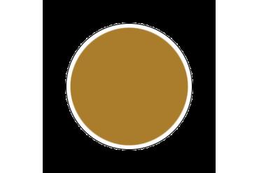 4672AP - Gloss Brass 20ml - akryl