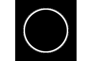 4695AP - Gloss Black 20ml - akryl