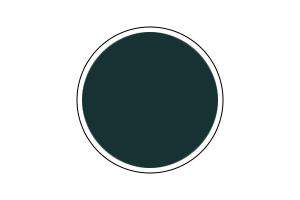 4780AP - Schwarzgrün RLM 70 20ml - akryl