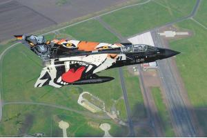"""Tornado """"Black Panther"""" (1:72) - 04660"""